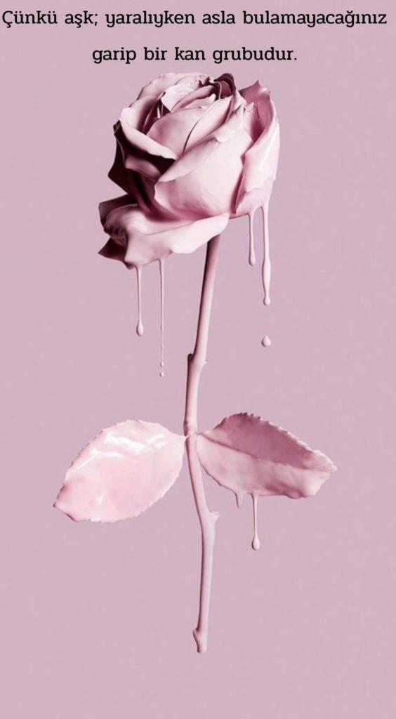 Çünkü Aşk yaralıyken asla bulamayacağınız garip bir kan grubudur 564x1024 - Resimli Aşk Sözleri - En Yeni Aşk Sözleri, guzel-sozler