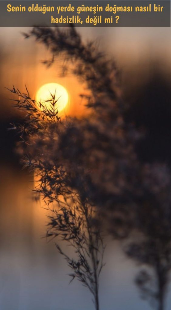 Senin olduğun yerde güneşin doğması nasıl bir hadsizlik. Değil mi 564x1024 - Resimli Aşk Sözleri - En Yeni Aşk Sözleri, guzel-sozler