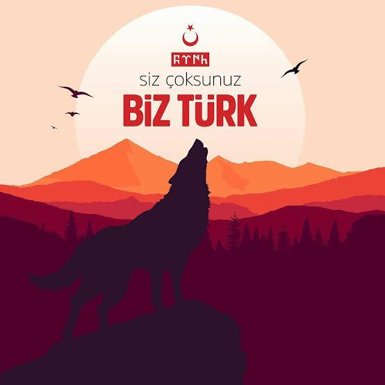 Siz çoksunuz biz Türk - Ülkücü İle İlgili Resimli Sözler - Ülkücü Sözleri, Milliyetçilik, Türk Sözleri, resimli-sozler, populer-sozler, mesajlar, anlamli-sozler