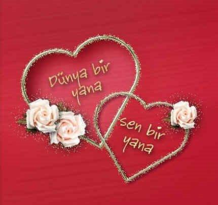 Dünya bir yana sen bir yana - 14 Şubat Sevgililer Günü Mesajları Resimli - Sevgililer Günü Mesajları, resimli-sozler, guzel-sozler, ask-sozleri, anlamli-sozler