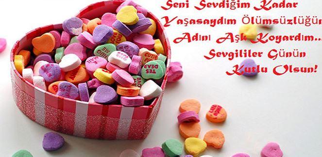 Seni sevdiğim kadar yaşasaydım ölümsüzlüğün adını aşk koyardım. Sevgililer günün kutlu olsun - 14 Şubat Sevgililer Günü Mesajları Resimli - Sevgililer Günü Mesajları, resimli-sozler, guzel-sozler, ask-sozleri, anlamli-sozler