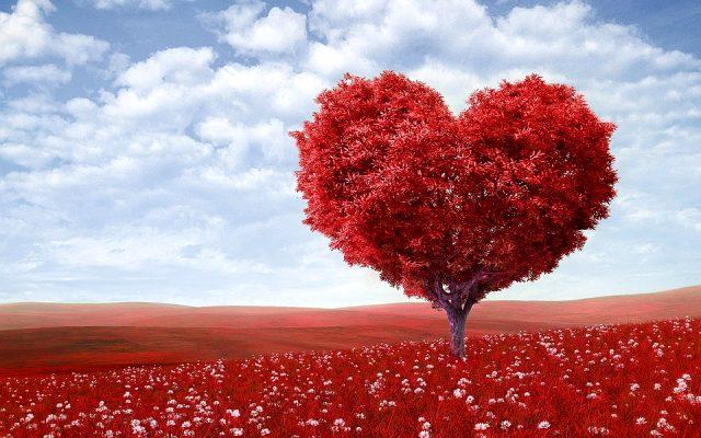 Sevgililer günü mesajları en yeni sevgililer günü sözleri - 14 Şubat Sevgililer Günü Mesajları Resimli - Sevgililer Günü Mesajları, resimli-sozler, guzel-sozler, ask-sozleri, anlamli-sozler