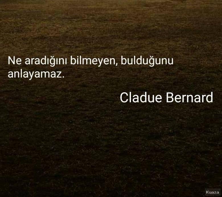 Ne aradığını bilmeyen bulduğunu anlayamaz Cladue Bernard Manalı Ve Özlü Sözler - Düşündürücü Özlü Ve Manalı Sözler - Resimli Özlü Ve Manalı Sözler, resimli-sozler