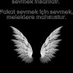Sevilmek umuduyla sevmek insanidir. Fakat sevmek için sevmek meleklere mahsustur. Resimli Duygusal Sözler En Yeni Duygu Yüklü Sözler 150x150 - Şu vakitten sonra ateş olsan, İbrahim'e bürünür bedenim. Resimli Duygusal Sözler – En Yeni Duygu Yüklü Sözler,